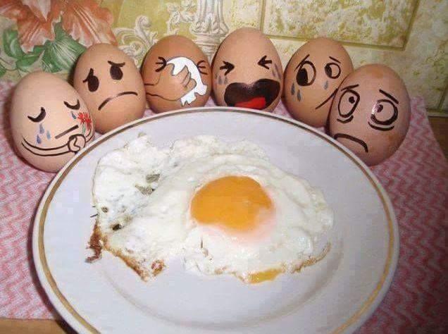 priveghiul oului